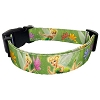 Disney Pet Collar - Green Tinker Bell Fairy with Butterflies