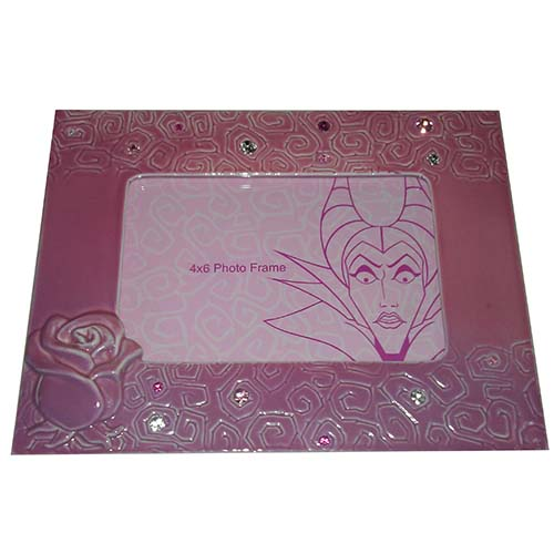 Beauty In Frame: Disney Picture Frame