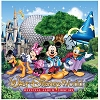 Disney CD - Storybook Walt Disney World Official Music - 2 Disc Set