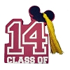 Disney Antenna Topper - Graduation - Class of 2014