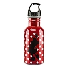 Disney Water Bottle - Minnie Mouse Aluminum Water Bottle
