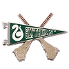 Universal Pin - Slytherin Quidditch Pennant Pin