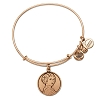 Disney Alex and Ani Charm Bracelet - Princess Leia Bangle - Gold