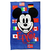 Disney Fleece Throw - Mickey Epcot Flags