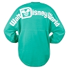Disney Adult Shirt - Walt Disney World Spirit Jersey - Teal/Green