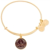 Disney Alex and Ani Bracelet - Pirates 50th Anniversary - Gold
