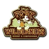 Disney Fort Wilderness Pin - Mickey Mouse Logo