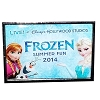 Disney Frozen Pin - Frozen Summer Fun 2014 Logo - Elsa Anna Olaf