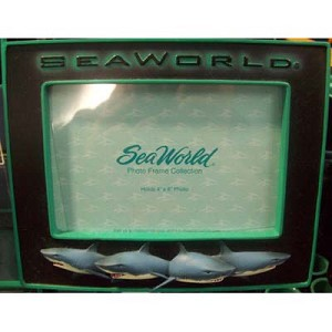 SeaWorld Picture Frame - Sharks Terrors of the Deep - 4 x 6
