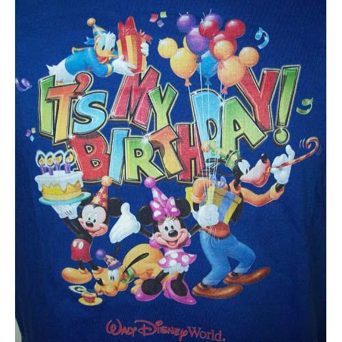 Disney Adult Shirt