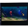 Disney Piece of Disney Movies Pin - Finding Nemo - Nemo