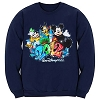 Disney Adult Sweatshirt - 2012 Walt Disney World - Navy