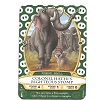 Disney Sorcerers of Magic Kingdom Cards - Colonel Hathi