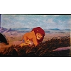 Disney Piece of Disney Movies Pin - The Lion King - Frame Mufasa 31