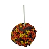 Disney Goofy Candy Co - Create Your Own Caramel Apple