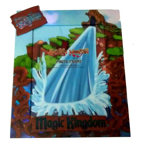Disney Picture Photo Frame - 8x10 and 5x7 - Splash Mountain
