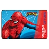 Universal Collectible Gift Card - The Amazing Adventures of Spider-Man