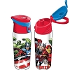 Disney Water Bottle - Marvel Hulk Thor Iron Man Flip Top Bottle - Florida Namedrop