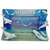 SeaWorld Photo Frame - Beluga Whale Sand Logo 4x6