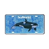 SeaWorld License Plate - Shamu Glitter