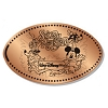Disney Pressed Penny - Splash Mountain Mickey and Friends