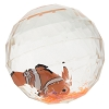 Disney Bouncy Glitter Water Ball - Finding Nemo - Nemo