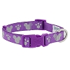 Disney Tails Dog Collar - Reflective Icons - Purple