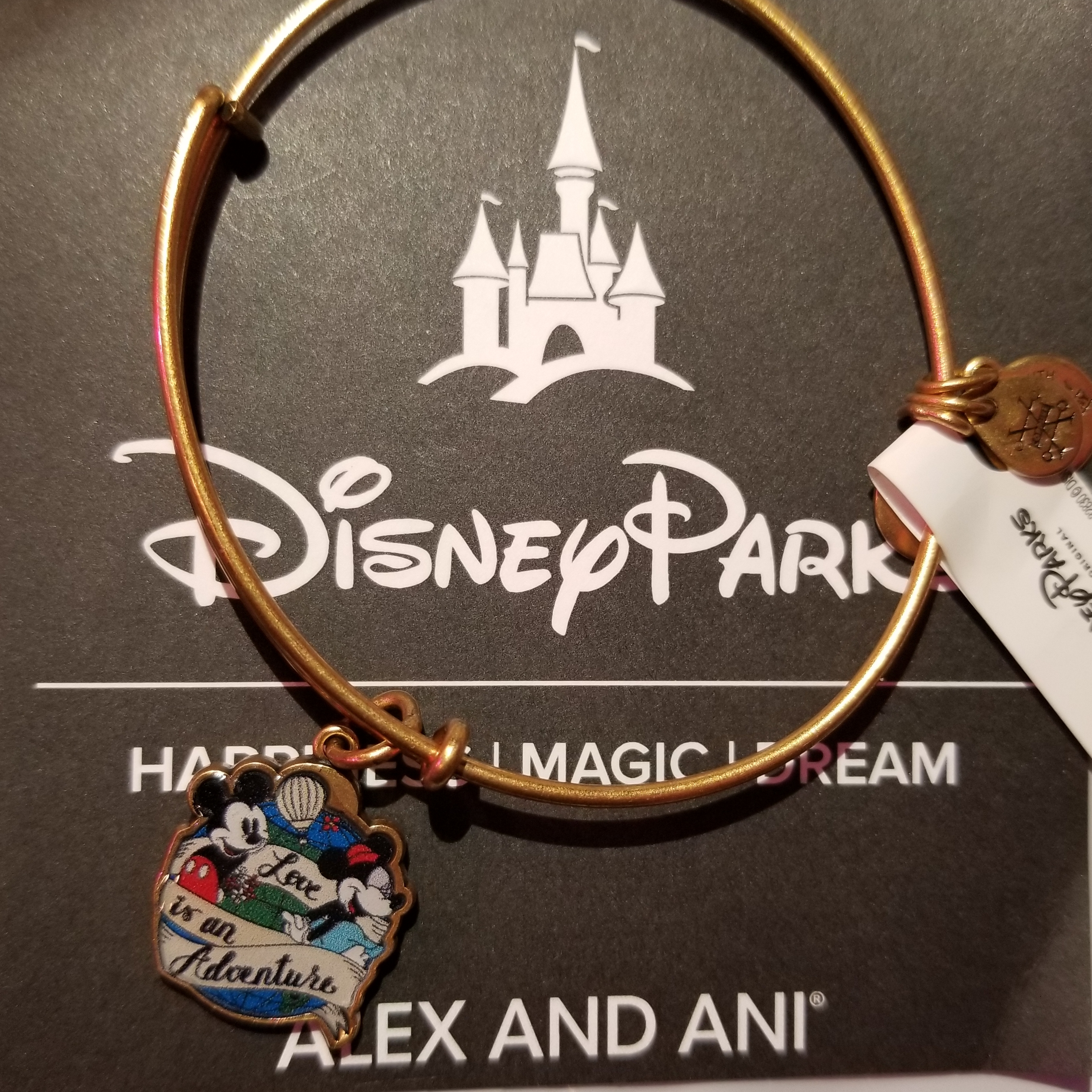 Disney Alex and Ani Bracelet - Love Is An Adventure - Gold