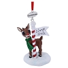SeaWorld Christmas Ornament - Rudolph at the North Pole