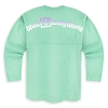 Disney Girls Shirt - Disney World Spirit Jersey - Mint