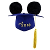 Disney Ear Hat Graduation Cap - Class of 2018 - Mortarboard