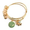 Disney Alex and Ani Bracelet - Peter Pan Bangle Set