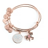 Disney Alex and Ani Bracelet - ''I Live in Fantasyland'' Charm Bangle Set