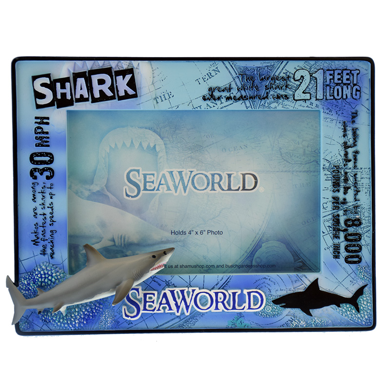 Your WDW Store - SeaWorld Picture Frame - Educational Design - Shark