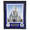 Disney Framed Glass Panel - Cinderella Castle with Coins