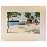 Disney Artist Print - David Doss - Heads Up At Castaway Cay