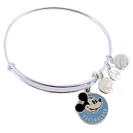 Disney Alex and Ani Bracelet - 2019 Walt Disney World - Passholder