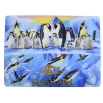 SeaWorld Postcard - Penguins - Lenticular