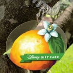 Disney Collectible Gift Card - 2019 Flower and Garden Wristband - Orange