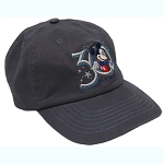 Disney Baseball Cap - Hollywood Studios 30th Anniversary