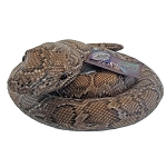 Universal Plush - Nagini Coiled Talking Puppet