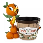 Disney Planter - Orange Bird - Epcot International Flower & Garden Festival 2020