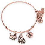 Disney Parks Alex and Ani Bracelet - Reigning Cats and Dogs - Disney Cats