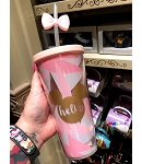 Disney Tumbler - Walt Disney World - Mickey and Minnie Mouse - Hello