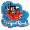 Disney's Blizzard Beach Water Park Pin - Mickey Mouse