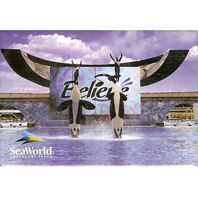 SeaWorld Magnet - Two Shamu Jumping Believe Show