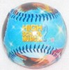 Disney Collectible Baseball - High School Musical