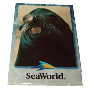 SeaWorld Magnet - Seal - Vertical