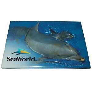 SeaWorld Magnet - Twin Bottlenosed Dolphins - Horizontal