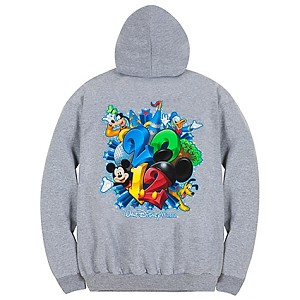 Disney Adult Hoodie - 2012 Logo Walt Disney World